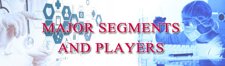 major-segments-and-players